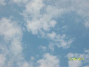 post-2296-1313421516_thumb.jpg