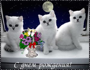 post-7163-1312726304_thumb.png