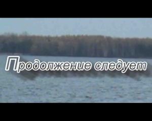 post-7163-1324308142_thumb.jpg