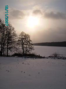post-1901-1195455581_thumb.jpg