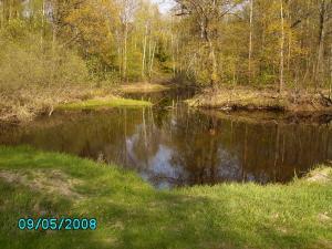 post-1901-1210753254_thumb.jpg