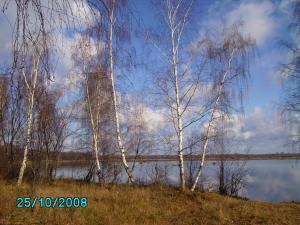 post-1901-1225098255_thumb.jpg