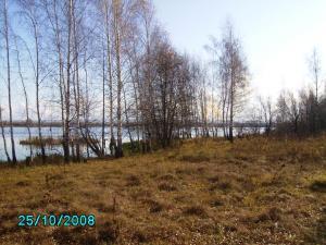 post-1901-1225098276_thumb.jpg