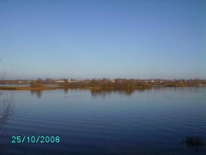 post-1901-1225098535_thumb.jpg